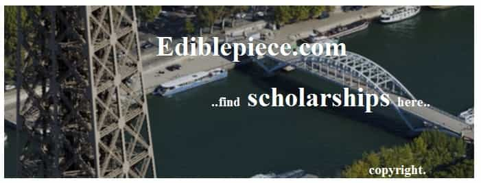 Specialised Scholarships