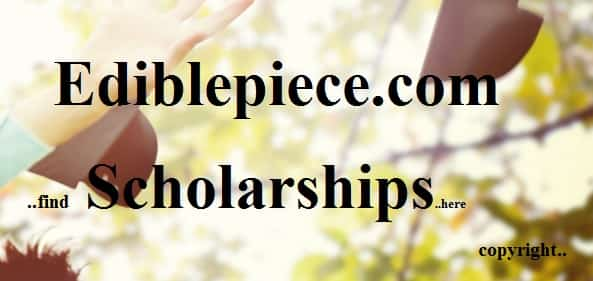 Humanities Scholarships