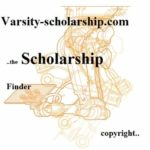 The Indian Institute of Astrophysics Scholarship