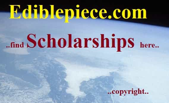 Business Scholarships