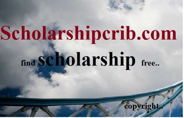Information Technology Scholarships