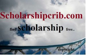 Information technology scholarships for developing countries