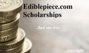 Post-doctoral scholarships in Spain for developing countries