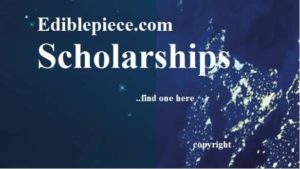 Kislak international students scholarships in USA
